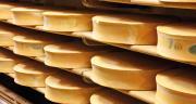 Le Cnaol appelle au maintien de la diversité fromagère CP : F. Prochasson/Adobe Stock.