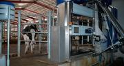 Les lactations de 18 mois donnent un TP plus favorable et donc un prix du lait plus élevé.