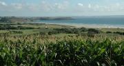 """Les actions mises en place commencent à porter leurs fruits en termes de qualité de l'eau"""" indique Elisabeth Congy de la chambre d'agriculture de Bretagne. Crédit : Danielle Bodiou"""
