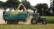 Les éleveurs bio cultivant entre 3 et 15% de maïs maintiennent les charges alimentaires tout en produisant davantage de lait.
