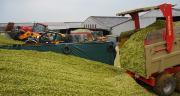 Les chantiers d'ensilage se sont déroulés dans de bonnes conditions, et les rendements en maïs fourrage sont supérieurs de 1 à 2 t/ha par rapport à la normale, voire 3 tonnes.© M. Lecourtier/Pixel image