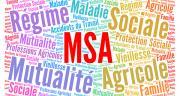 La MSA a mis en place des mesures exceptionnelles de report de paiement des cotisations pour les exploitants et pour les chefs d'entreprise agricole. CP : Ricochet64/AdobeStock