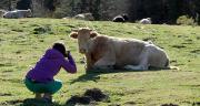 Les clichés représentant le bien-être animal sont à envoyer jusqu'au 15 juin. ©Philipimage/AdobeStock