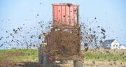 Épandre son fumier un mois et demi à deux mois avant les semis de maïs. ©JeanLuc/Adobestock