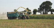 Le climat bouleverse les chantiers d'ensilage de maïs. CP : Pixel6TM