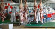 Selon l'Observatoire de la formation des prix et des marges des produits alimentaires, le prix de la viande bovine a augmenté en rayon, mais les prix moyens pondérés des gros bovins entrés en abattoir en 2019 sont globalement inférieurs à ceux observés sur la moyenne quinquennale. CP : DR