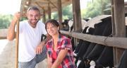 La SodiaalBox sera mise en œuvre à partir du 1er janvier 2015. Environ 250 agriculteurs de moins de 40 ans devraient en bénéficier chaque année. Photo : auremar-fotolia.