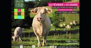 Idéale, une vache charolaise de l'élevage de Jean-Marie Goujat, est l'égérie du prochain Sia. Photo : Sia 2020 - P. Parchet.
