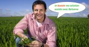 Balsamo permet des apports tardifs : 3e apport DFE et 4e apport à épiaison (5 à 50% du grain formé) ! Photo : DR
