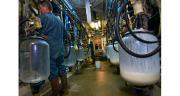 Les incidents climatiques et le repli structurel constaté essentiellement dans le sud de la France expliquent le recul de la collecte laitière, selon le ministère de l'Agriculture. ©C. Helsly/Cniel