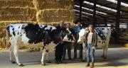 Bernard Bihain, patron de Genclis, Joris Erzen, directeur de la ferme, Christophe Pioche, responsable élevage bovin et Lydie Saunier, présidente de l'Alpa, ont noué un partenariat autour du troupeau laitier. ©JL.Masson/Le Paysan Lorrain