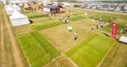 Le Covid-19 aura eu raison du Salon de l'herbe et des fourrages 2020. CP : DR.