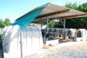 Les 12 cases à veaux sont installées sur une dalle béton, et sous un toit sur roulettes qui peut être déplacé. Crédit : N. Tiers/Pixagri