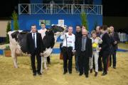 La grande championne prim'holstein du concours général agricole de Paris vient des Côtes-d'Armor. Photo: Prim'Holstein France