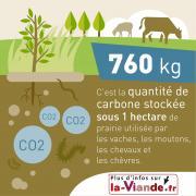Deux des 13 infographies évoquent le stockage de CO2. Image Interbev