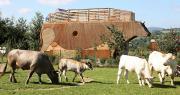 La vache Ecolodge comprend 35m2 d'espace intérieur. Photo: Divertiparc