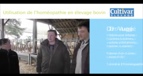 Wombyl, Traumasedyl, PVB Rhumatismes, PVB Abces, PVB poudre de calcaire, peut-être que ces noms vous disent quelque chose ? En effet, il s'agit de médicaments homéopathiques pour l'élevage bovin.