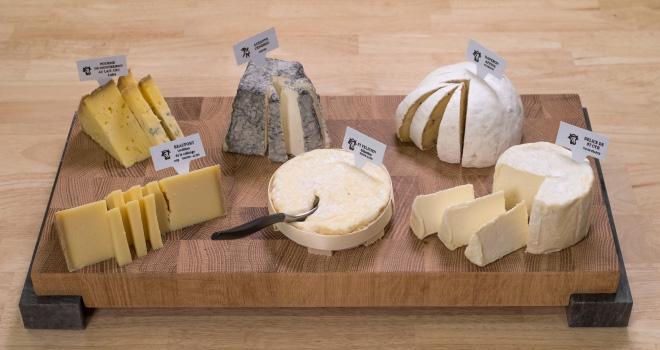 « Il y a urgence à réagir, sans quoi plusieurs filières fromagères AOP, chères aux Français, pourraient ne pas se relever après cette crise inédite », alerte Sodiaal dans un communiqué. CP : G.Blanchon/Cniel.