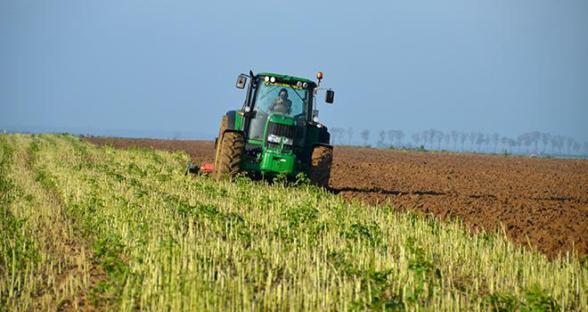 Les couverts implantés avant le maïs doivent être détruits avant le 15 mars, sous peine de pénaliser le maïs qui suit.