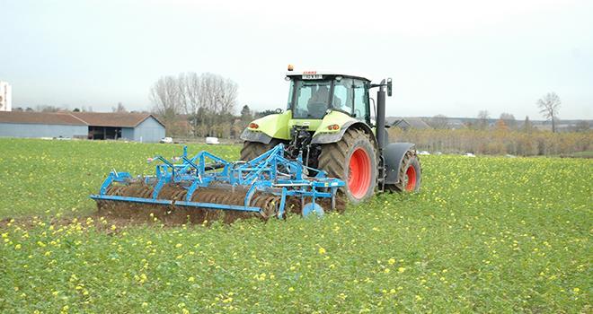 Bien détruire ses couverts avant d'implanter un maïs fourrage. ©M.Lecourtier/Média et Agriculture