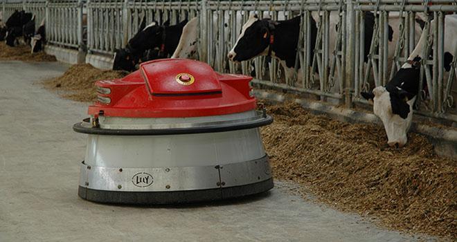 L'éleveur doit s'interroger sur sa place dans l'élevage et la nature des relations avec ses animaux qu'il souhaite préserver. Photo : D. Bodiou/Pixel image.