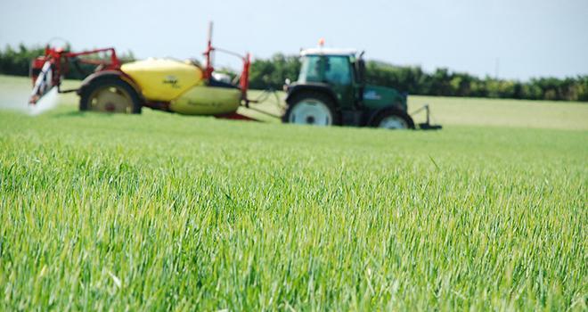 De nouveaux outils permettent d'évaluer l'impact des évolutions agronomique à l'échelle de l'exploitation. Photo : N. Chemineau/Pixel image