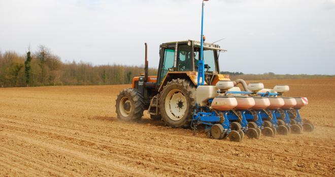 La réussite du maïs dépend en grande partie du semi. CP : M.Lecourtier/Média&Agriculture.