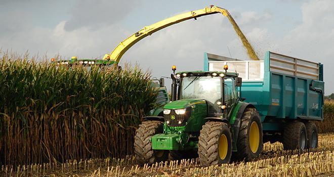 Une qualité de maïs ensilage correcte malgré un été sec.