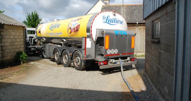Face aux volumes devenus trop importants, les laiteries demandent aux éleveurs de diminuer les livraisons. CP : Pixel6TM