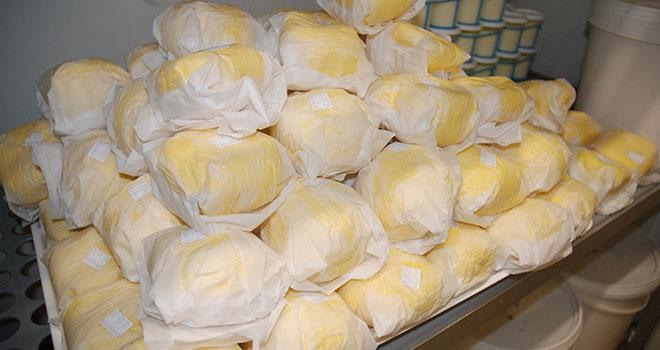 Aujourd'hui, en France, 20 % du lait collecté sont consacrés à la fabrication du beurre : 9% pour le beurre destiné à la grande consommation et 11% pour le beurre à destination des industriels. Photo : N.Tiers/Pixel Image