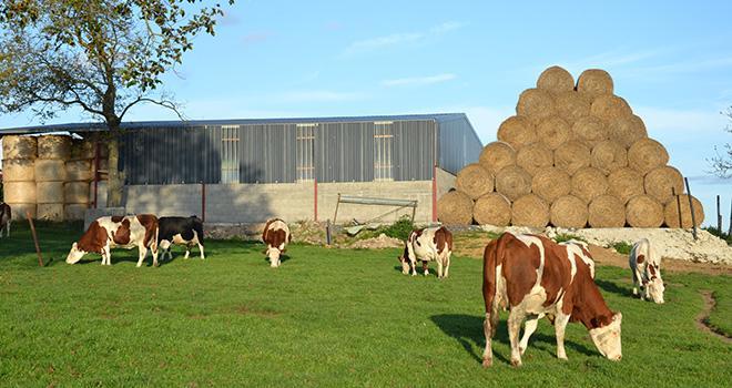 L'institut de l'élevage et Arvalis-Institut du végétal resserent leurs liens pour favoriser les synergies entre les cultures et l'élevage.