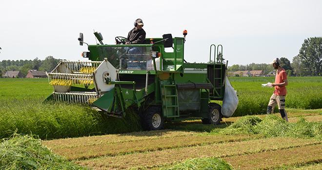Des échantillons sont réalisés à la récolte afin de déterminer la teneur en eau et la valeur alimentaire. Photo : S. Bot/ATC