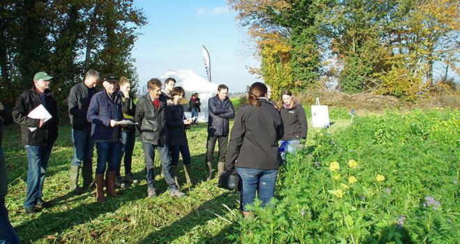 Eilyps a invité ses adhérents a découvrir la plate-forme de démonstration de couverts végétaux.