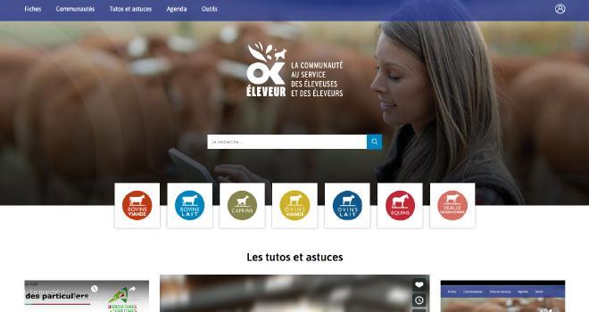 Ok Éleveur, la première plateforme interactive dédiée aux éleveuses et aux éleveurs.