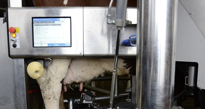 Les éleveurs n'utilisent que 10% de la capacité de leur système de management de troupeau. Photo : A. Cotens/Pixel image