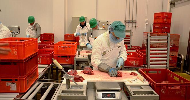 La transformation de la viande représente près de 28 700 emplois en France. Photo : A. Cotens/pixel images