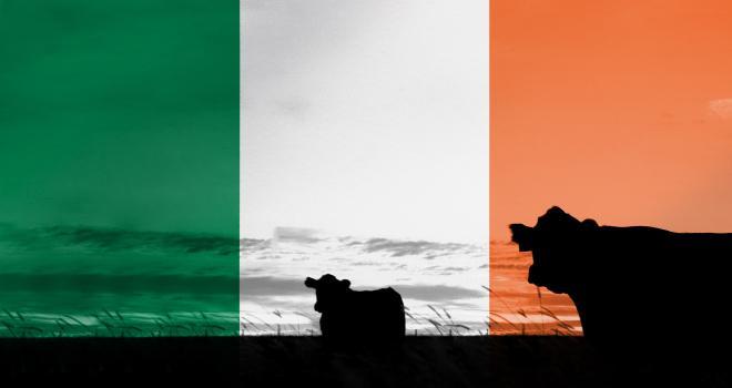 En 2019, l'Irlande a exporté 9000 tonnes de viande bovine vers la Chine. Les prévisions de 15 à 20 000 tonnes en 2020 ne seront pas atteintes, suite à la découverte d'un cas d'ESB. CP : Alexander Sánchez/Adobe Stock
