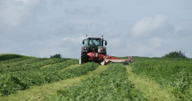 Le regroupement d'andains permet de réaliser des économies de récolte sans détériorer la qualité du fourrage. CP : DR.