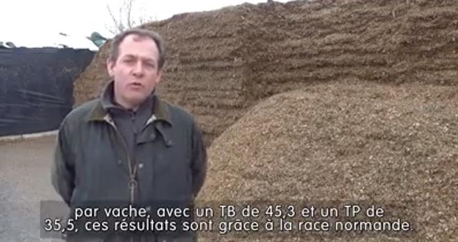 Stéphane Leullier choisi ses variétés de maïs en fonction des UF, de la digestibilité et de la vigueur de départ.
