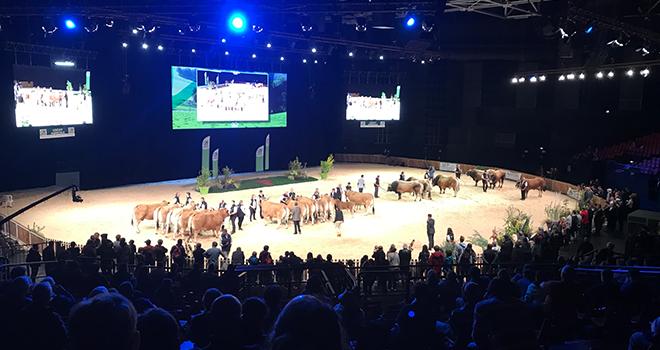 Le Sommet de l'élevage attend plus de 95 000 visiteurs cette année. © C.Lamy-Grandidier/Pixel6TM