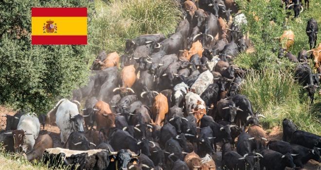 L'Espagne poursuit sa croissance des exportations vers les pays tiers. CP : DR
