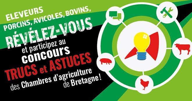 L'événement permet de partager les trucs et astuces pour améliorer les conditions de travail en élevage. ©DR