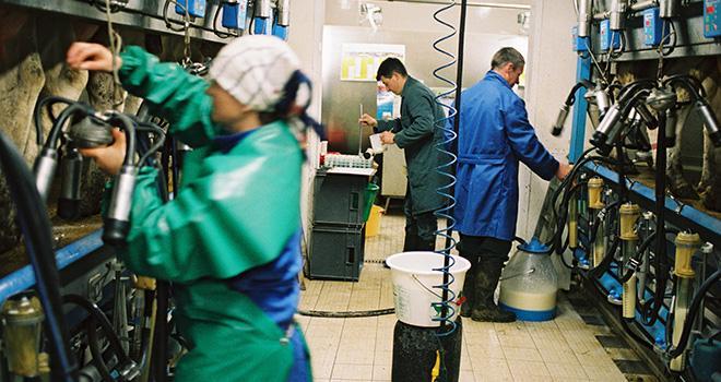 Coachlait propose à ses clients un contrôle laitier à valeur ajoutée à partir des analyses de lait réalisées par son partenaire Lacteus. Photo : L. Gueneau, Cniel