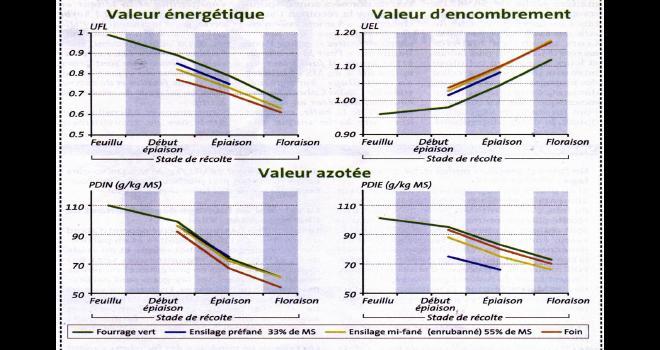 Évolution des valeurs énergétiques protéiques et d'encombrement des fourrages en fonction du stade et du mode d'exploitation. Photo : DR.
