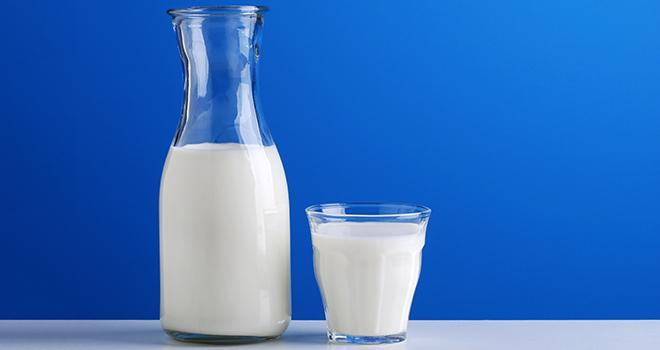 Après un recul de 3,7% en juin 2016 par rapport à juin 2015, la collecte de lait de vache se stabilise en juillet. © Al62/Fotolia