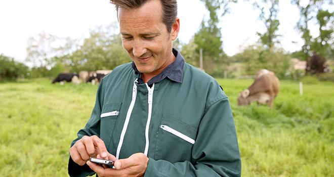 Notalim, logiciel technico-économique pour estimer l'efficacité de la ration des vaches laitières, s'utilise sur Smartphone. Photo : fotolia