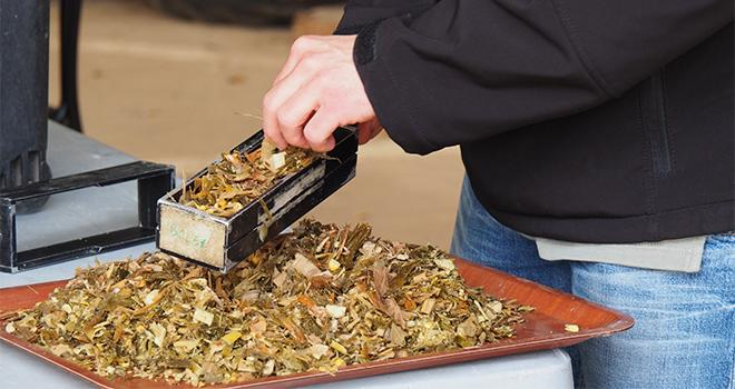 Les éleveurs peuvent déposer leurs échantillons de fourrages sur l'un des points de collecte et repartir directement avec leurs résultats d'analyses. Photo : BCEL Ouest