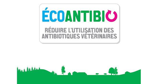 Le plan Écoantibio 2017-2021 vise à inscrire dans la durée la baisse de l'exposition des animaux aux antibiotiques.