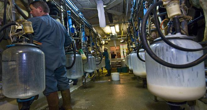 Si le prix du lait standard se redresse en octobre par rapport au mois précédent dans la plupart des bassins laitiers (+0,8%), il reste en retrait de 4,7% par rapport au mois d'octobre 2015. Photo : C. Helsly/CNIEL