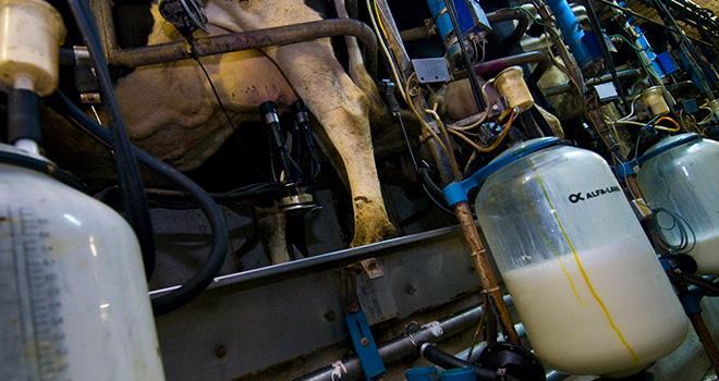 En août 2020, malgré sa hausse saisonnière, le prix standard du lait conventionnel, à 332,6 €/1 000 l, reste inférieur de 11,4 €/1 000 l au prix d'août 2019. ©C. Helsly/CNIEL